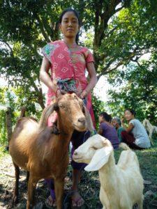 Parbati og geitene. Foto: Hindu Karki/ADRA Nepal.